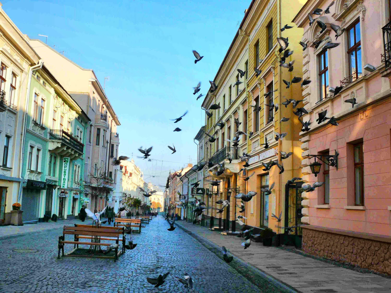 Постоянная регистрация в Черновцах от хозяйки