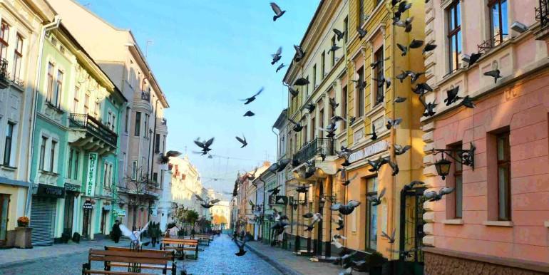 Регистрация в Черновцах у хозяина